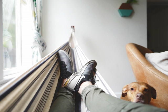 Man and dog laying on a hammock enjoying the cool air indoors during the summertime